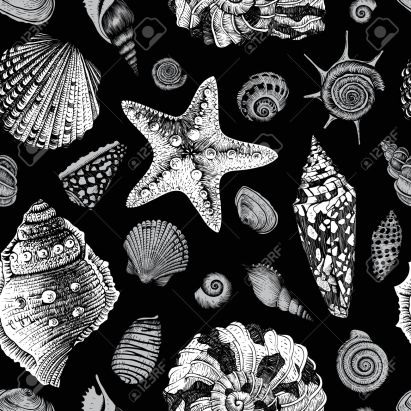 Vector seamless vintage pattern with black and white seashells on black background.