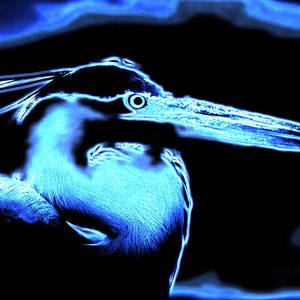 abstract-blue-great-blue-heron-elizabeth-abbott