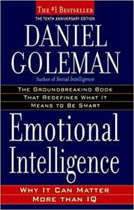 Emotional-Intelligence-Why-It-Can-Matter-More-Than-IQ-191x300