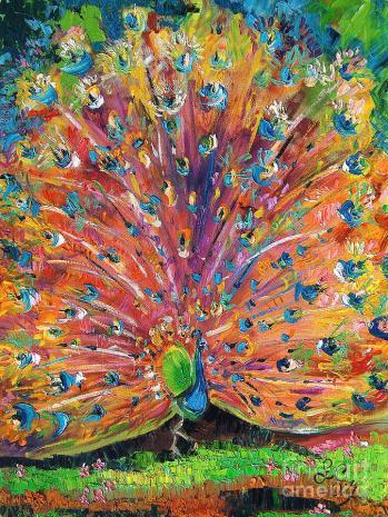 peacock-splendor-birds-of-color-ginette-callaway
