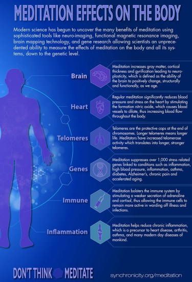 Effects-of-Meditation-on-the-Body-800W